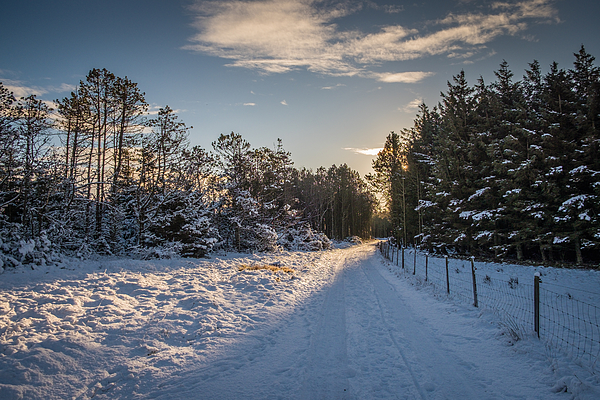 Winter Landscape From Lista In Norway Photograph by Finn Bjurvoll Hansen