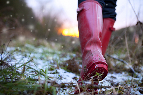 Winter Walk in Wellies Photograph by Cjp