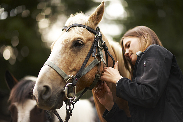 Woman caring for horse. Photograph by Thomas Northcut
