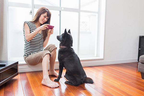 Woman photographing dog on camera phone Photograph by Takamitsu GALALA Kato