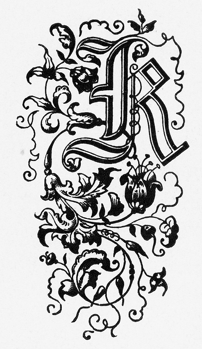 "Woodcut of a Capital ""K"" Ornate Victorian Engraving, Circa 1892 Drawing by Bauhaus1000"