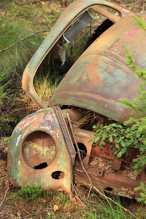 Wreck of a classic car Photograph by Pejft