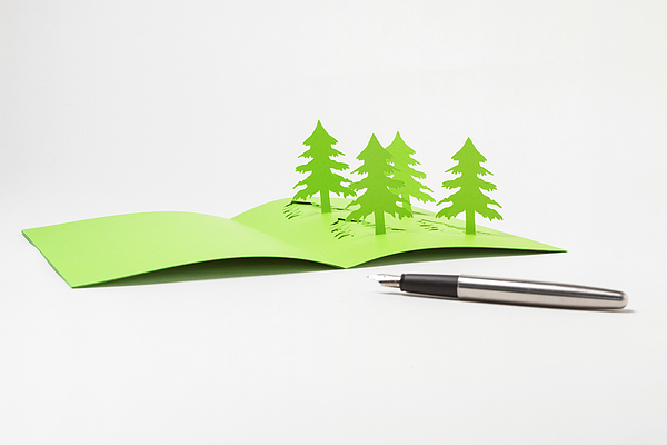 Writing A Homemade  Pop-Up Christmas Tree Card Photograph by Catherine MacBride