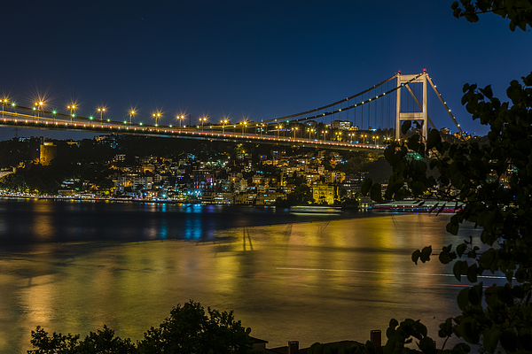 Yellow Photograph by Pelin Genç