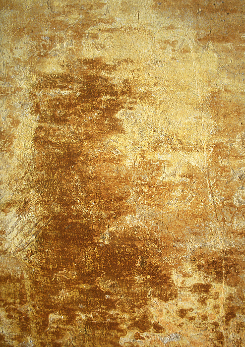 Yellowing, Brownish Wall. Photograph by Isabelle Rozenbaum