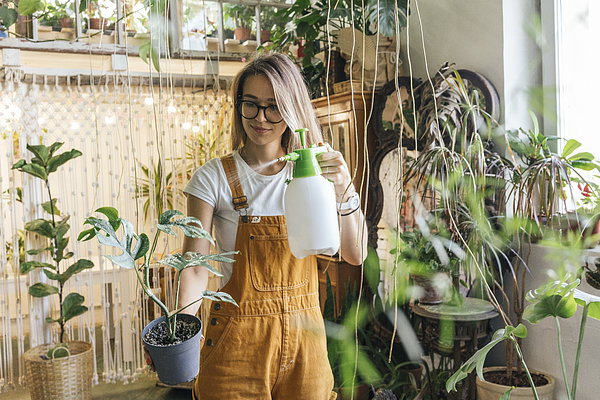 Young woman caring for plants in a small shop Photograph by Westend61