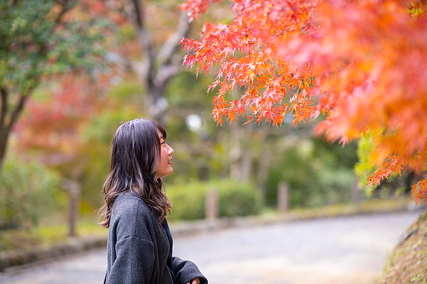Young woman looking at orange autumn leaves in public park Photograph by Satoshi-K