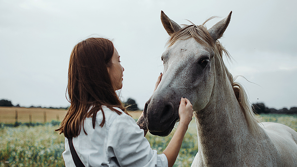Young Woman With Horse Photograph by Masha Raymers