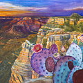 South Rim Wonders by Jany Schindler