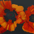 3 Poppies by Richard Le Page