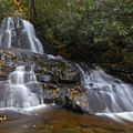 Autumn At Laurel Falls by Darrell Young