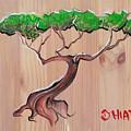 Bonsai  by Jhiatt