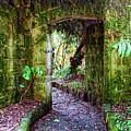 Botanic Garden - Bogota by Galeria Trompiz