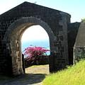 Brimstone Gate by Ian  MacDonald