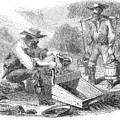 California Gold Rush, 1860 by Granger