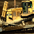Cat Bulldozer . 7d10945 by Wingsdomain Art and Photography