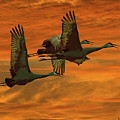 Cranes At Sunrise by Larry Linton