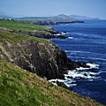 Dingle Coastline Near Fahan Ireland by Teresa Mucha