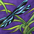 Dragonfly by Stephanie  Jolley
