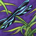 Dragonfly by Stephanie  Jolley