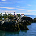 East Quoddy Lighthouse by Nancie DeMellia
