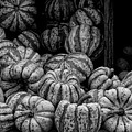 Gourds by Robert Ullmann