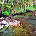 Greesy Creek by Stan Hamilton