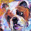 Impressionistic Bulldog Painting  by Svetlana Novikova