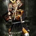 Japanese Samurai Doll by Christine Till