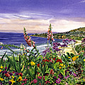Laguna Niguel Garden by David Lloyd Glover