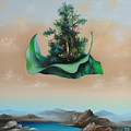 Levitation by Zoltan Ducsai