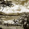 Llanos Venezolanos by Galeria Trompiz