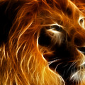 Lord Of The Jungle by Wingsdomain Art and Photography