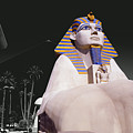 Luxor Sphynx by Tom Fant