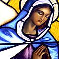 Mary In Glass by JoeRay Kelley