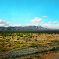Pleasing Prairie by Paul Tokarski
