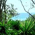 South Shore Bermuda by Ian  MacDonald