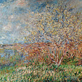Spring by Claude Monet