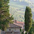 Tuscan Farmhouse At Villa Vignamaggio by Mathew Lodge