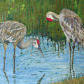 Two Cranes by Libby  Cagle