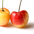 Two Rainier Cherries by Blink Images