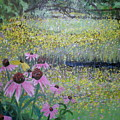 Wild Spring Flowers by Hal Newhouser