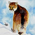 Winter Cougar by Jimmy Smith