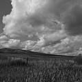 Mountain Farm by Mark Smith