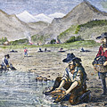 California Gold Rush by Granger