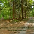 12- The Road Not Taken by Joseph Keane