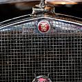 1930 Cadillac Roadster Hood Ornament 3 by Jill Reger