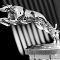 1930 Lincoln Berline Hood Ornament by Jill Reger