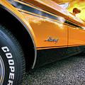 1973 Ford Mustang by Gordon Dean II