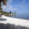 Castaway Point On The Indian River Lagoon With Coquina Rock by Allan  Hughes